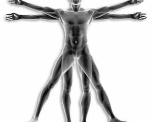 img-body02-analisi-composizione-corporea